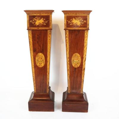 Pair of 19th century Adamesque Mahogany and Olive wood Pedestals