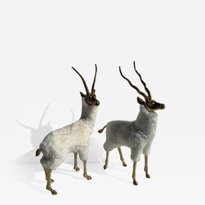 Pair of Brass Gazelle or Antelopes in Sheep Fur