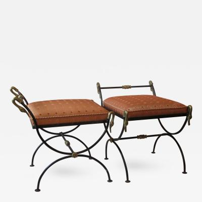 Pair of Neoclassical Curule Stool With Brass Swans