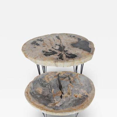 Pair of Petrified Wood Side Tables With Iron Feet late 20th Century