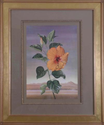 Paul Jones Paul Jones b 1921 Hibiscus Chinese Rose 1971