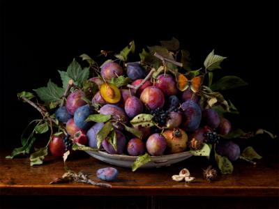 Paulette Tavormina Italian Plums After GG from the series Natura Morta 2015