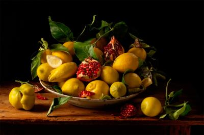 Paulette Tavormina Lemon and Pomegranates after J v H 2010