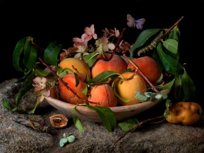 Paulette Tavormina Peaches and Hydrangeas After GG from the series Natura Morta 2015