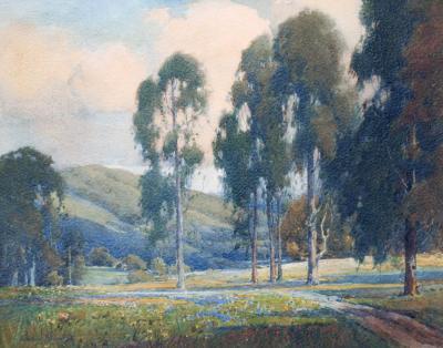 Percy Gray Eucalyptus Trees and Wildflowers
