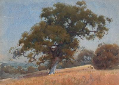 Percy Gray Hillside Oaks
