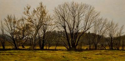 Peter Sculthorpe Buttonwoods in Autumn