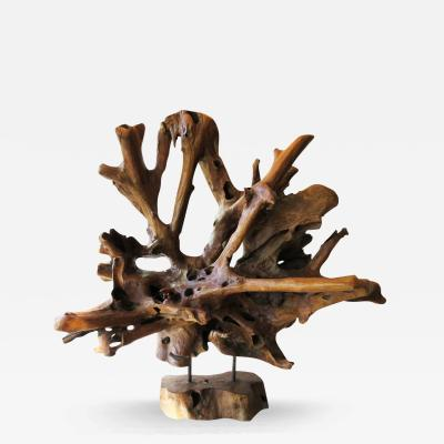 Petrified Organic Wood Sculpture