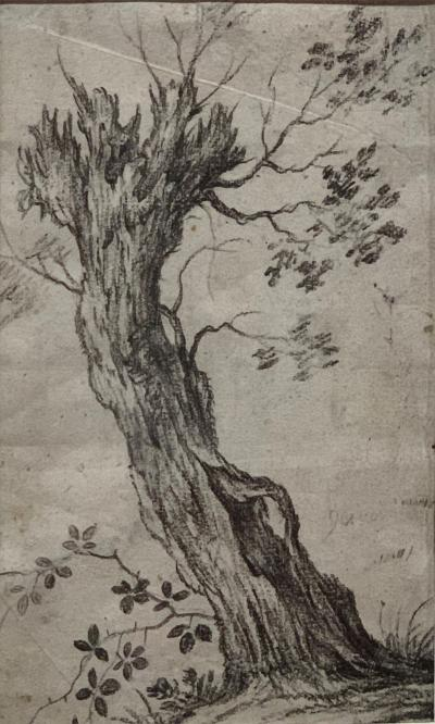 Philips Wouwerman Pair of Tree Studies