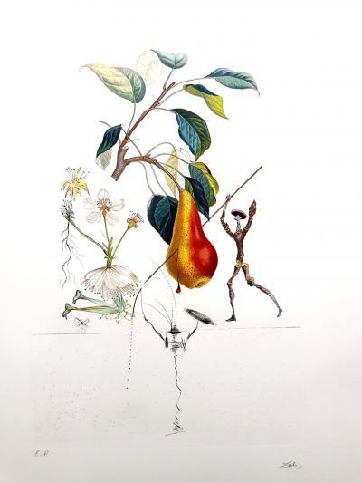Salvador Dal Salvador Dali Don Quixote Pear Original Hand Signed Lithograph