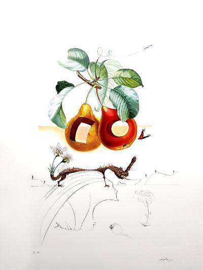 Salvador Dal Salvador Dali Fruits With Holes Original Hand Signed Lithograph