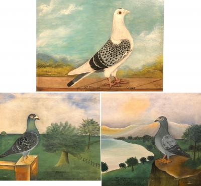 Set of 3 folk art paintings of racing pigeon portraits signed and dated