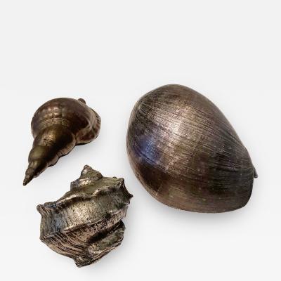 Set of Three Large Antique Italian Silvered Bronze Seashells