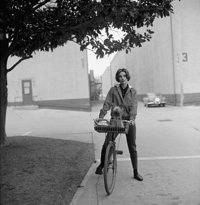 Sid Avery Audrey Hepburn on Bicycle with her Pet Dog Famous