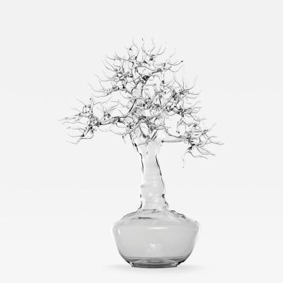 Simone Crestani Bonsai 17 003 from the Landscape Work