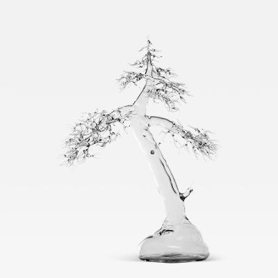 Simone Crestani Bonsai 17 004 from the Landscape Work
