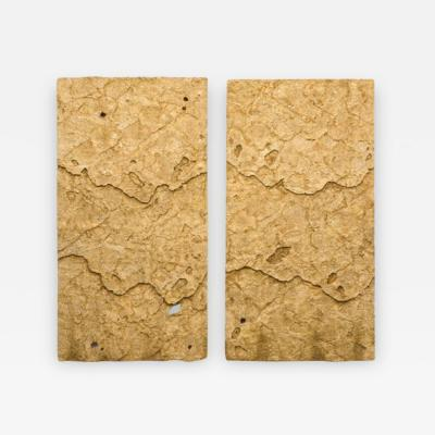 Sophie Coryndon Sophie Coryndon Dossel Diptych UK 2018