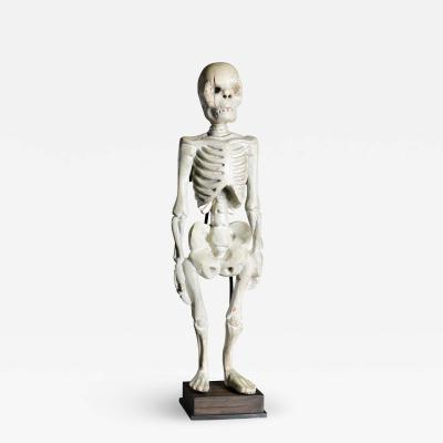 Standing Human Skeleton Sculptured in Wood