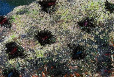 Stanley Boxer Heavens blooms