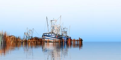 Stanleys Fish Camp by Stephen Harlan