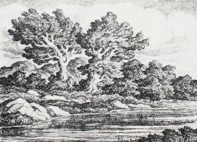 Sven Birger Sandz n Bennington Lake