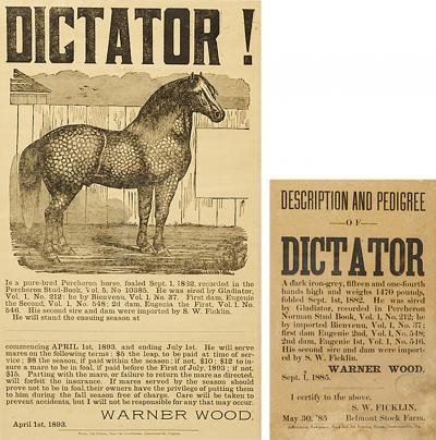 TWO BROADSIDES FOR THE PERCHERON STUD DICTATOR