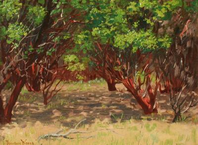 Theodore Wores Manzanita Trees