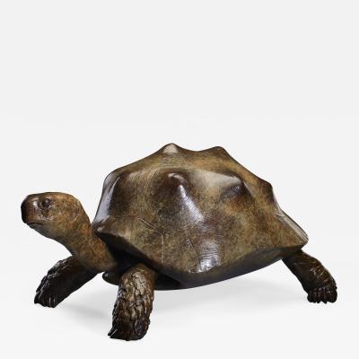 Tobias Martin Tortoise