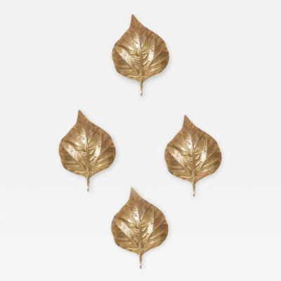 Tommaso Barbi 1 of 4 Huge Rhaburb Leaf Brass Wall Lights or Sconces by Tommaso Barbi