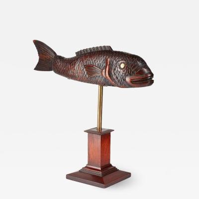 Torrent Fish