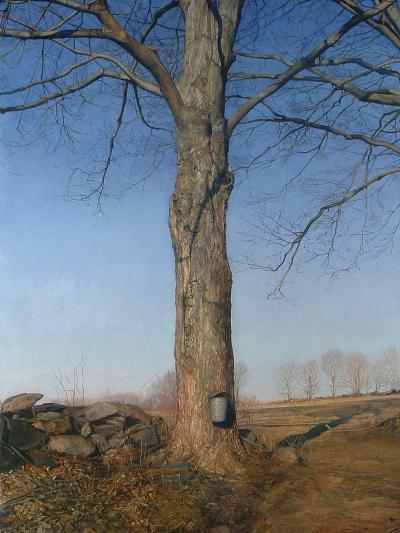 Trey Friedman Trees On a Line 58