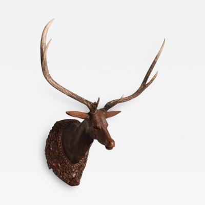 Very Fine Anglo Indian Padouk and Antler Stag Head