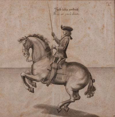 Vienna Spanish Riding School Set of Six Engravings Late 18th C