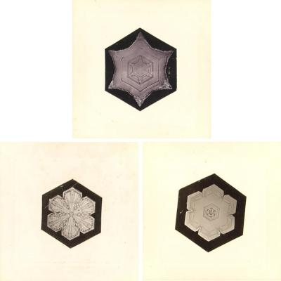 Wilson Bentley Snowflakes by Wilson Bentley 1865 1931