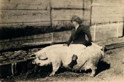 Woman Riding a Pig Early 20th Century Photograph