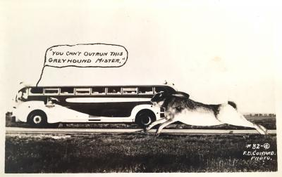 You cant outrun this Greyhound Mister c 1950s