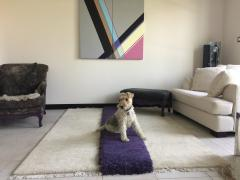 Carpets CC Mohawk - 1571709
