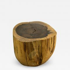 Costantini Design Costantini Hand Carved Live Edge Solid Wood Trunk Cocktail Table 26 In Stock - 1899911