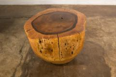 Costantini Design Costantini Hand Carved Live Edge Solid Wood Trunk Cocktail Table 35 In Stock - 2080014