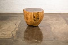 Costantini Design Costantini Hand Carved Live Edge Solid Wood Trunk Cocktail Table 35 In Stock - 2080293