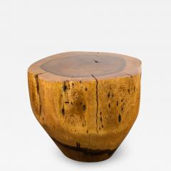 Costantini Design Costantini Hand Carved Live Edge Solid Wood Trunk Cocktail Table 35 In Stock - 2098242