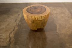Costantini Design Costantini Hand Carved Live Edge Solid Wood Trunk Cocktail Table 36 In Stock - 2080023