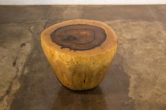 Costantini Design Costantini Hand Carved Live Edge Solid Wood Trunk Cocktail Table 36 In Stock - 2080026
