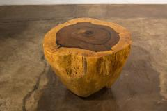 Costantini Design Costantini Hand Carved Live Edge Solid Wood Trunk Cocktail Table 37 In Stock - 2080106