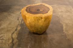 Costantini Design Costantini Hand Carved Live Edge Solid Wood Trunk Cocktail Table 37 In Stock - 2080108