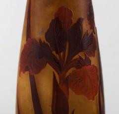 D argental Large art nouveau vase in cameo glass with reed and flowers - 1322095