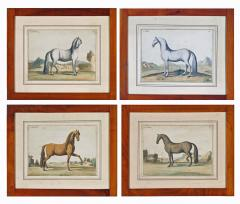 Eisenberg Prints of Four Horses by Baron DEisenberg - 1778852