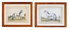 Eisenberg Prints of Four Horses by Baron DEisenberg - 1778853