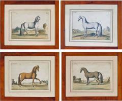 Eisenberg Prints of Four Horses by Baron DEisenberg - 1778977
