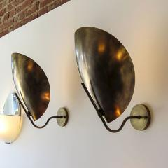 Gallery L7 Raw Brass Beetle Wall Lights by Gallery L7 - 582063